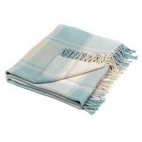 Dylan Duck Egg Check Cotton Throw